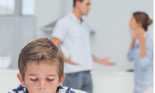 Может ли суд лишить меня родительских прав если я вовремя плачу алименты?